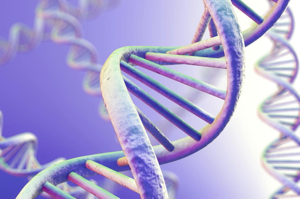 Ученые изНовосибирска обнаружили ген, ответственный задепрессию