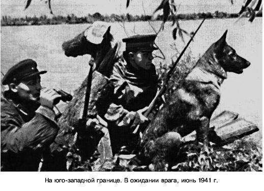 Вот как мой дед встретил Великую Отечественную Войну 1941